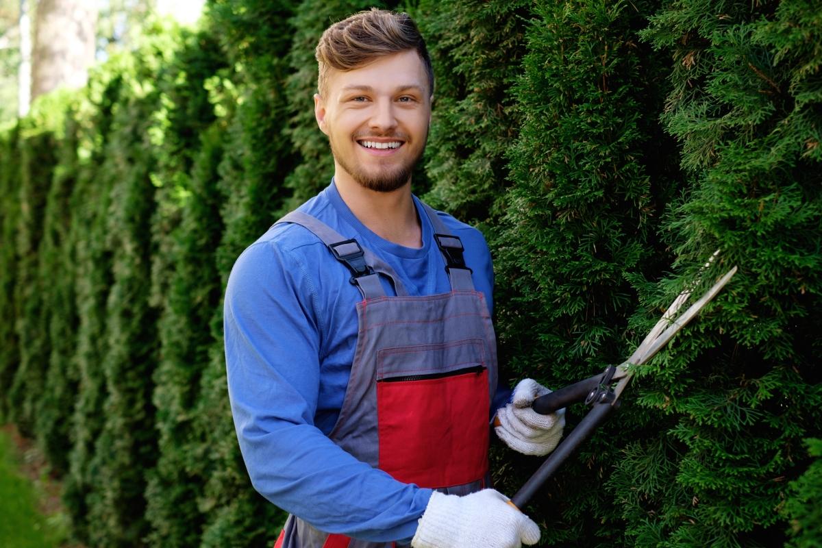ищу садовника садовник в москве
